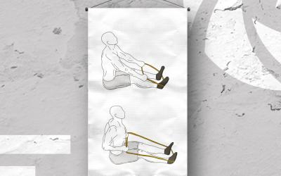 Tirage horizontal assis